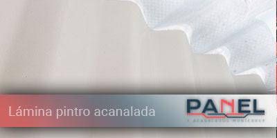 lamina-pintro-acanalada-productos-PanelyAcanalados